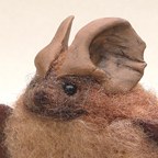 Mexican Freetail Bat